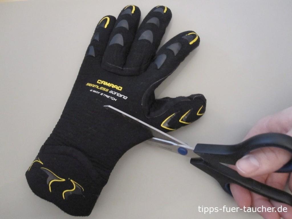 Zuschnitt der Handschuhe kurz unterhalb des Handschuhdaumens